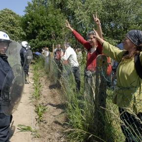Wetteren: Quand des activistes foutent une bonne BASF aux OGM
