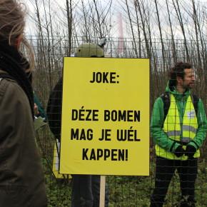 Envoyez aussi un permis d'abbatage à Joke!