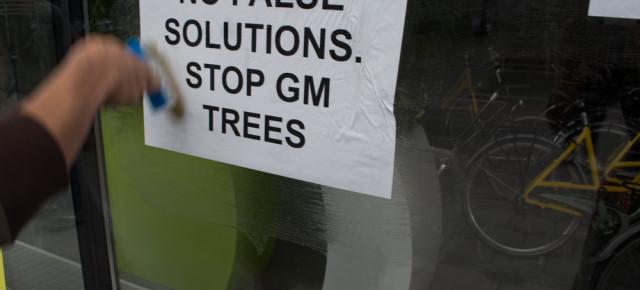 Actie : Joke, kap ermee! Jouw GGO-populieren zijn een valse oplossing!Action : Laisse tomber, Joke ! Tes peupliers OGM's sont une fausse solution !